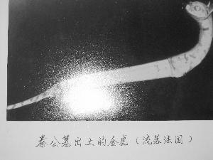 秦公墓出土的金虎(曾流落法国)。资料照片