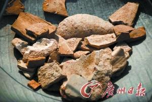 遗址出土的部分陶片