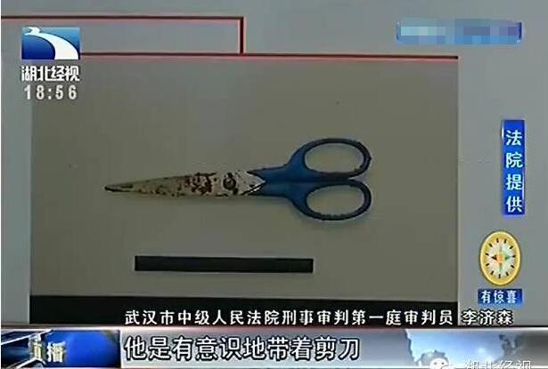 武汉一大学生抢手机强奸女生 狂捅对方160多刀