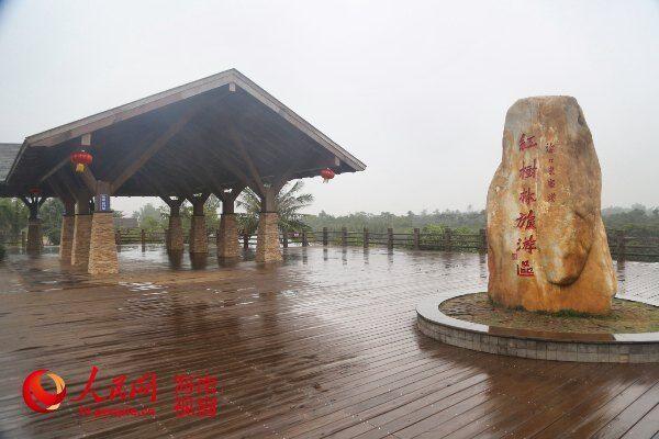 红树林游览景区