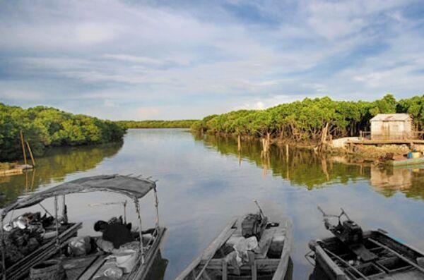 昔日渔船踪影不在 一抹蓝天绿树长留