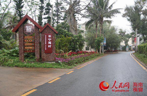 红树林保护区周边的村落绿道