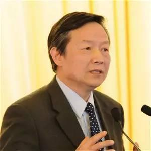 仇保興。中國住房和城鄉建設部前副部長(圖片來源:博鰲亞洲論壇官網)
