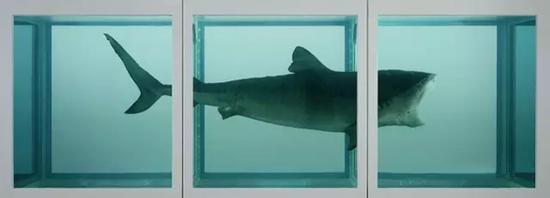 赫斯特是事件营销高手,当年买下了一头鲨鱼并泡在了福尔马林中,精明地将其命名为《生者对死者无动于衷》,让观众的观看也成为艺术作品的一部分。