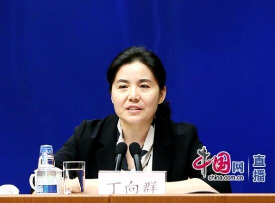 国家开发银行副行长丁向群。中国网 宗超/摄