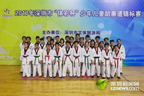 2017体彩杯微少男跆拳道竞赛 南地脊队收成3枚金