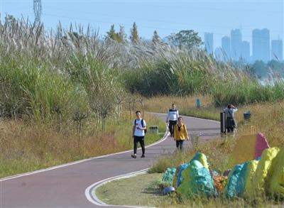 温江绿道的未来:绿色经济带百亿新业态