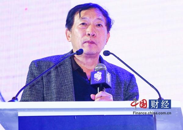 魏迎宁:险企转型发展应量体裁衣加强科技创新
