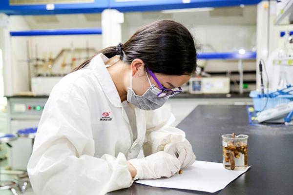 康美药业担当中医药行业质量标兵