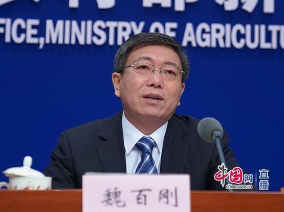 农业农村部:生猪生产呈现恢复态势 牛羊禽肉增加较快