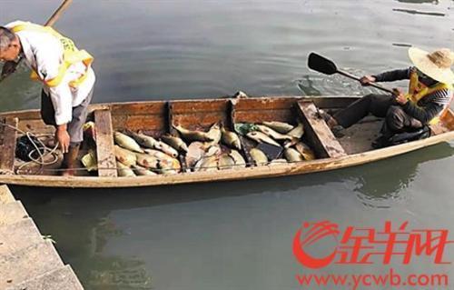广州旺旺涉嫌偷排被查 曾是环保标兵 专家称十分失望