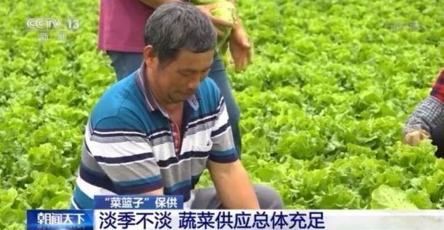 蔬菜供应总体充足 价格大幅上涨可能性不大