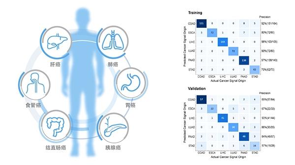 """""""和瑞基因发布多癌种早筛最新研究成果 涵盖6大中国高危癌种"""