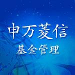 申万菱信基金管理有限公司
