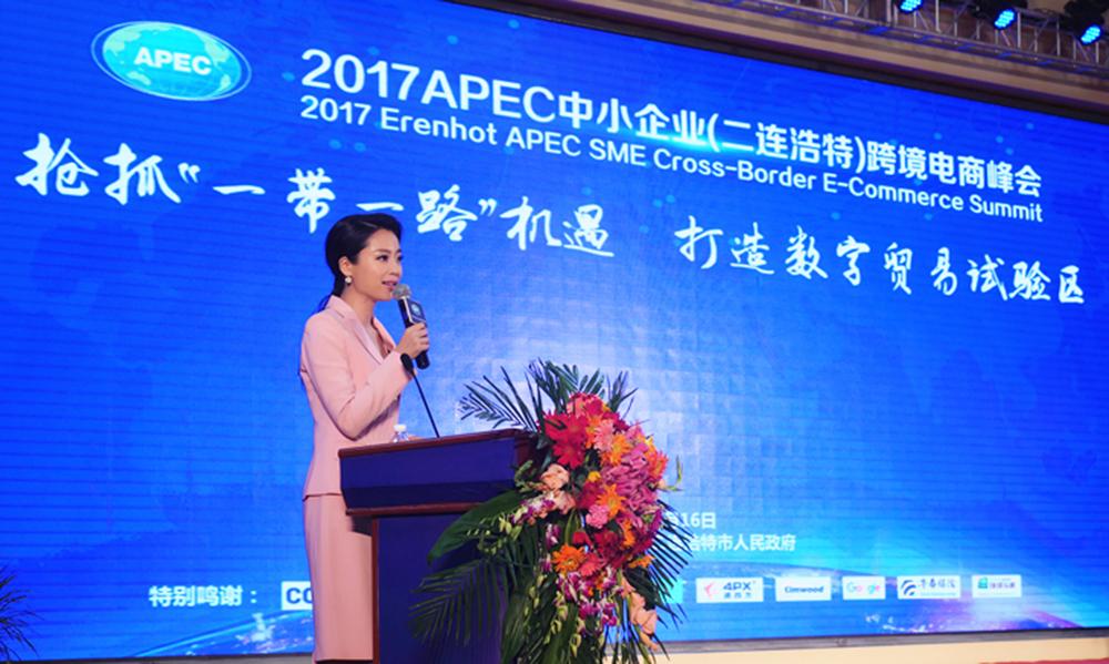 中央电视台新闻频道双语主持人吕律
