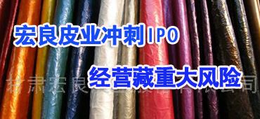宏良股份IPO:涉嫌重大财务造假