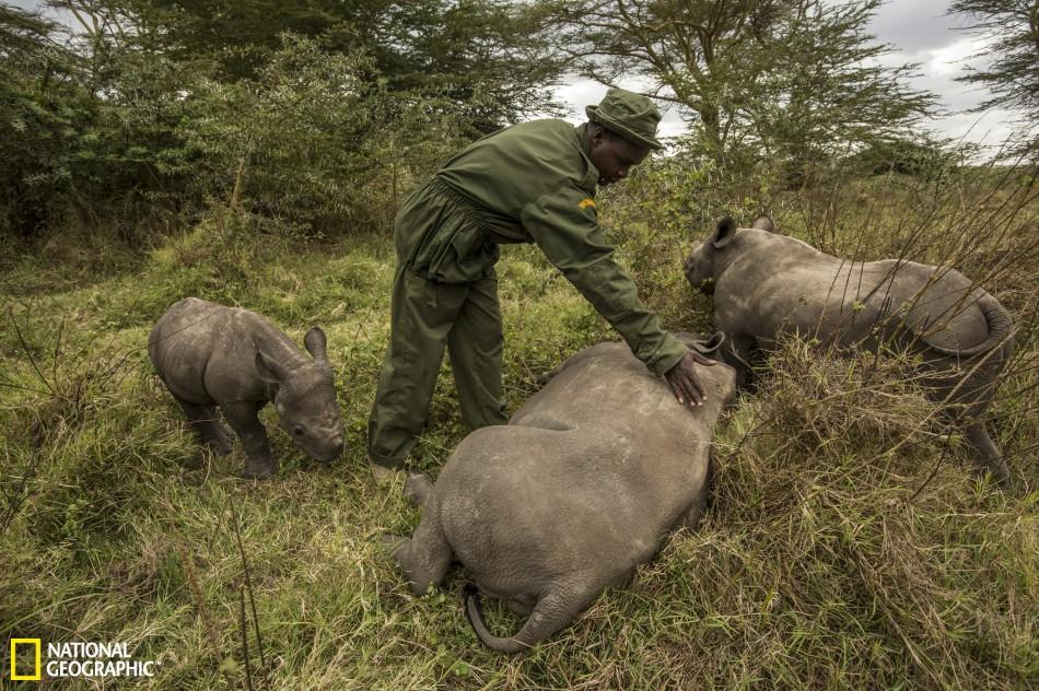 卡马拉是勒瓦野生动物保护区的一名管理人员
