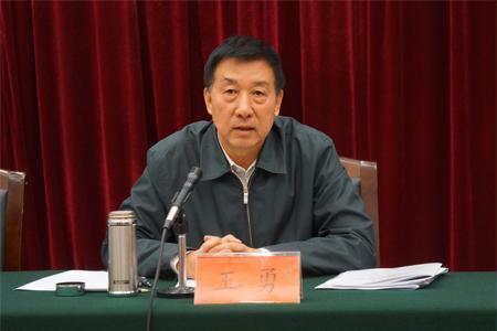 王勇出席中央企业援青工作座谈会