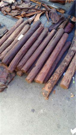 木料商赌树不确定:海南黄花梨价格为啥狂涨