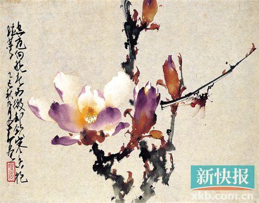 水泽木兰彩铅手绘
