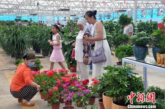 中国最大花木市场