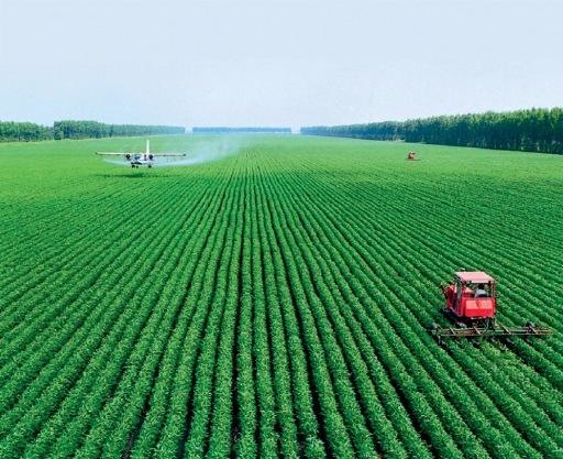 中国亩均化肥用量是美国2.6倍 农药利用率仅为35%