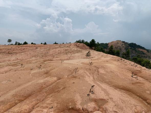 中铝广西稀土及下属企业遭通报:整改不到位 环境污染问题突出