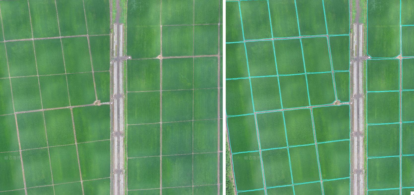 XAI 基于无人机高清图像自动识别农田边界(右)。该高清农田地图可导入植保无人机,指导无人机精准飞行并完成全自主作业。
