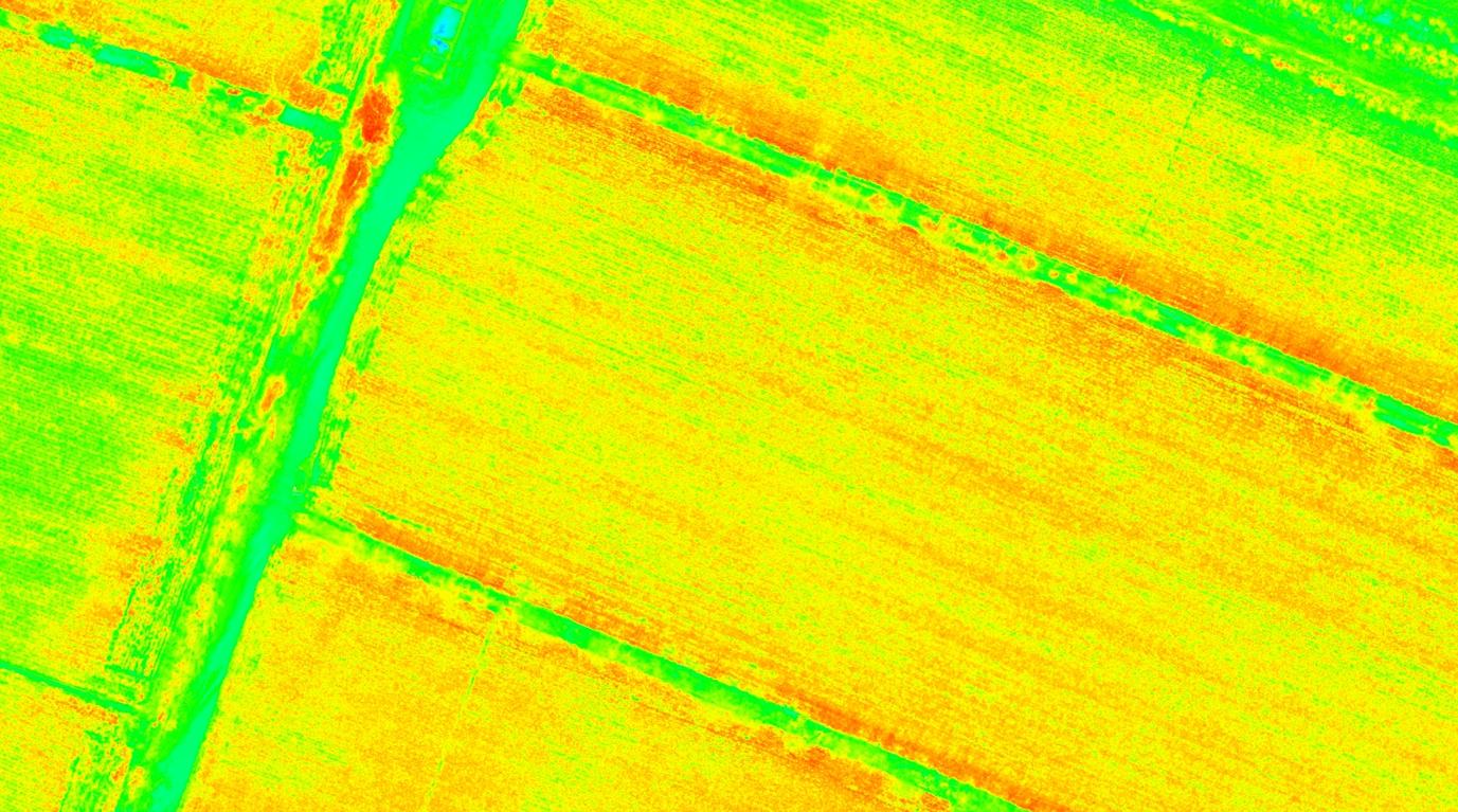 基于无人机拍摄的棉田多光谱影像,可利用XAI自动识别作物长势,辅助棉田喷洒决策